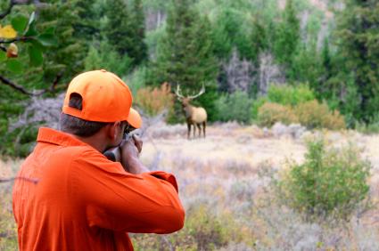 Deer Hunting Rifles
